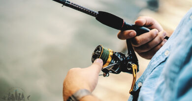 Best carp fishing reel